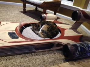 Speeder Cat Bed.jpg