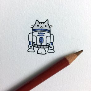 r2-cat2.jpg