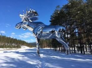 Silver Moose.jpg
