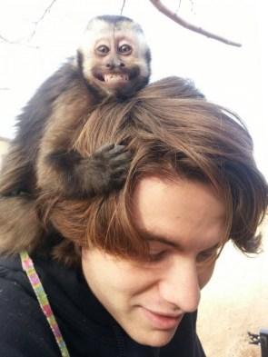monkey head.jpg