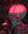 flamingo brain