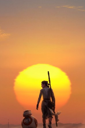 Rey and BB-8 walking into the sunset.jpg