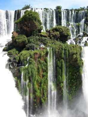 Waterfall Forest.jpg
