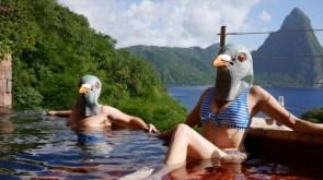 bird pool.jpg