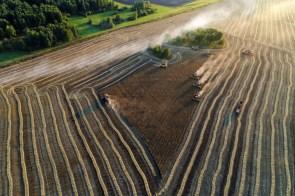 broken farming angels.jpg