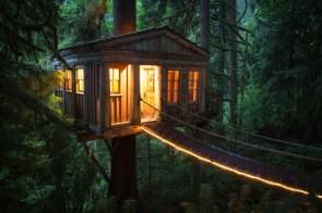 tree house cabin.jpg