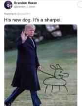 SHARPEI