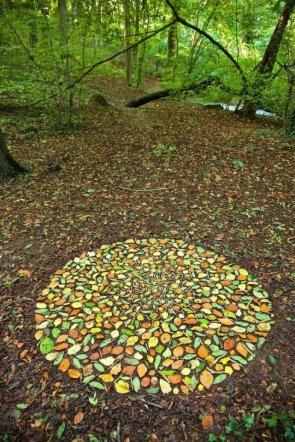 leaf formation