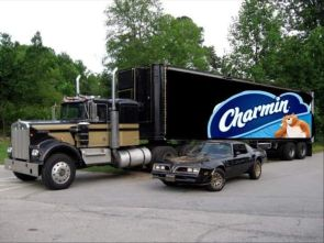 Charmin and the Bandit