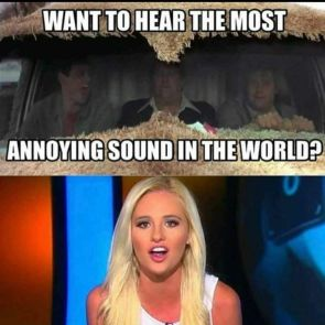 THE MOST ANNOYING SOUND IN THE WORLD