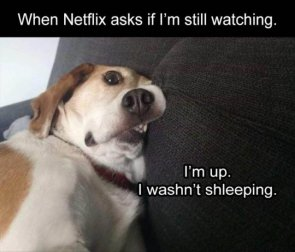 when netlix is asked