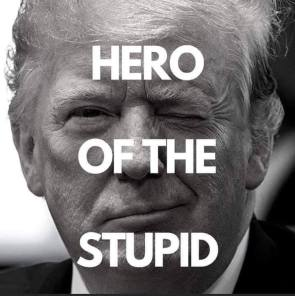 HERO OF THE STUPID