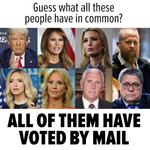 VOTED BY MAIL