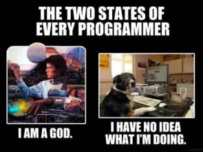 two states of every programmer