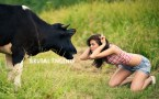 cow vs girl