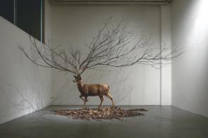Tree/Deer