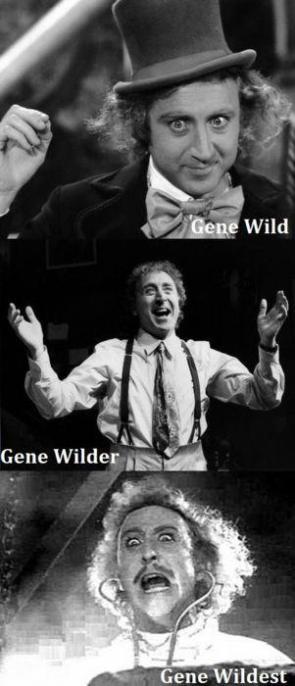 A Wild Gene Wilder appears!!