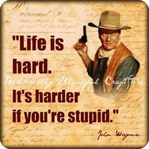 stupid life