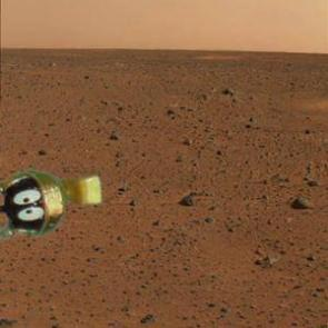 First Image of Life on Mars