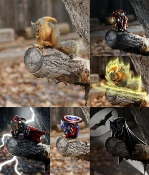 Squirrel Heroes