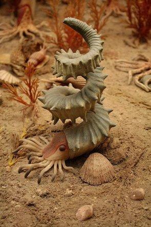 prehistoric snail
