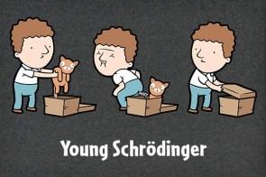 Young Schroedinger