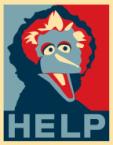 Help Big Bird