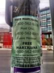 Free weed!