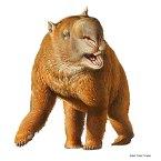 Super wombat