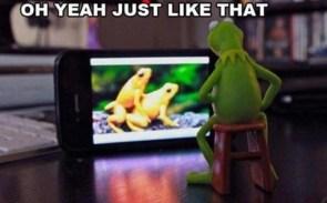 Kermit's Porn