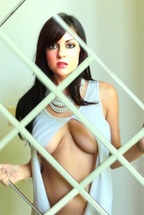 chick behind the fence