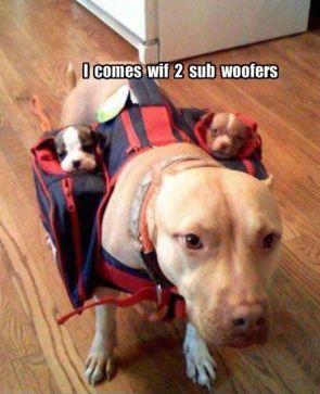 2 sub woofers