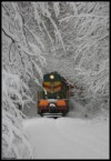 train to a winter wonderland
