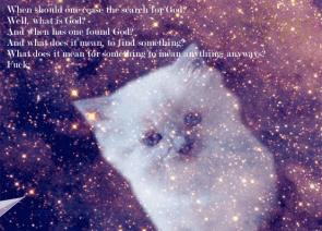 Transcendental cat
