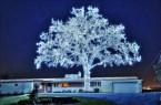 39,760 Christmas lights