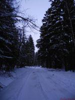 snow_2.jpg