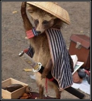 Samurai Raccoon