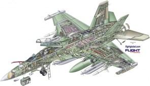 Growler cutaway