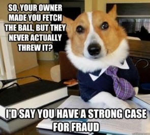 Small Dog Lawyer