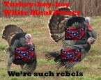 turkey rebels