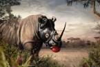 Rhino Gimp