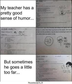Teachers that like their job