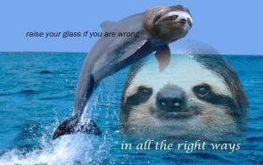 Sloth dolphin