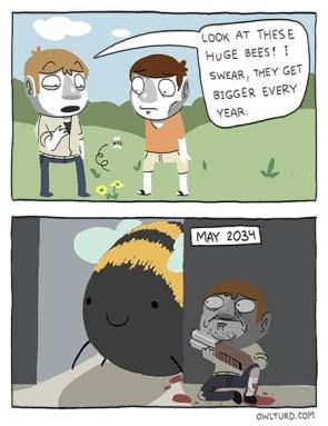 Huge bees!