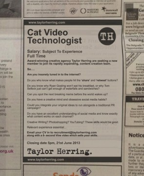 Help Wanted: Cat Video Technologist
