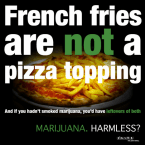 french fries not pizza topping