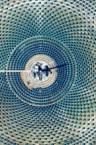 solarplex