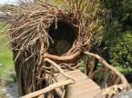 Human Nest