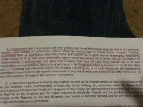 American Idol audition contract