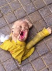 Street doll